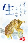 蝉の抜け殻.jpg